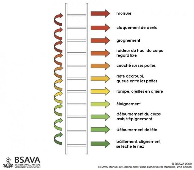 Ladder_of_agression