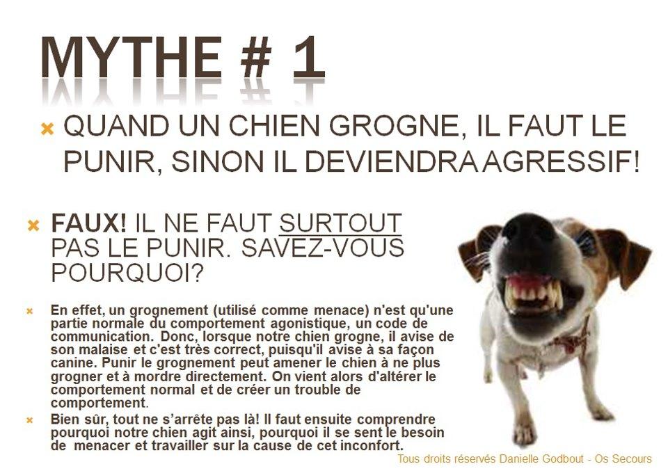 Comment se comporter chien agressif o promener son for Ou se promener dans les yvelines